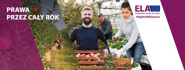 Kampania nt. pracy sezonowej w UE 2021